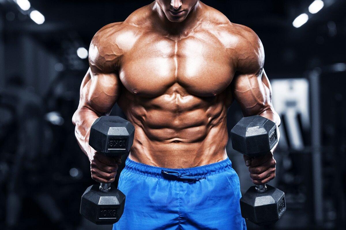 Cách tăng cơ bắp hiệu quả và khoa học nhất